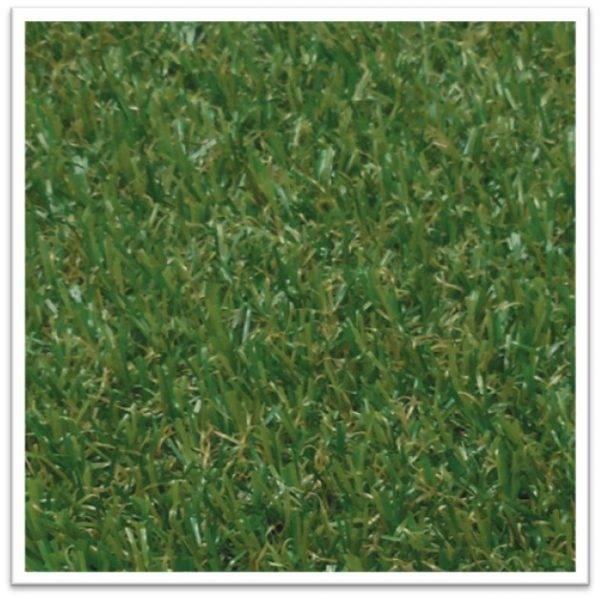 EMS-2005 PLAY GRASS 60
