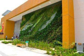 muros verdes artificiales beneficios