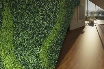 pisos laminados con muros verdes ch